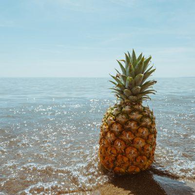 ananas-1834329_1920